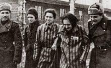 Documents rendus publiques de la libération des camps par les Russes