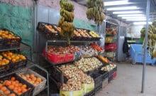 Chemita : fruits et légumes de Palestine après 7 ans d'embargo