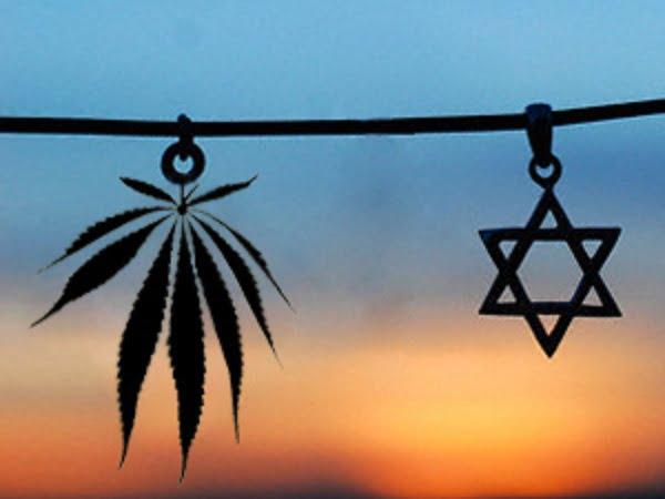 selon le rabbinat la marijunana cashère le pessah