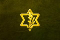 La réforme du service militaire israélien se profile