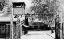 Des élèves surpris en flagrant délit de vol à Auschwitz-Birkenau encourent 10 années d'emprisonnement