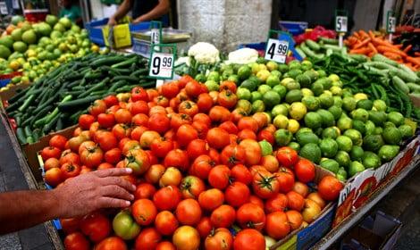 60 000 tonnes de légumes à prix raisonnable dans nos assiettes