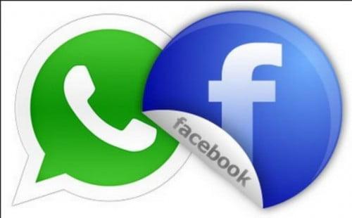 WhatsApp serait plus fiable que Facebook