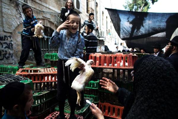 La municipalité de Tel Aviv interdit la tenue des Kaparot dans les rues de la ville