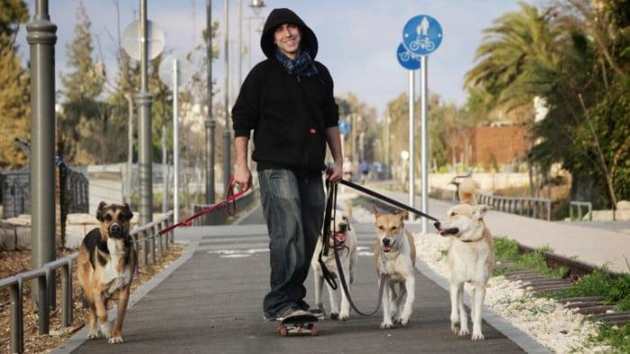 Une société israélienne propose une solution innovante au problème des déjections canines