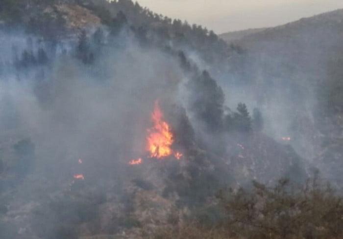 Israël: des incendies à la chaîne