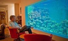 Israël: la vidéo aquatique qui fait le buzz