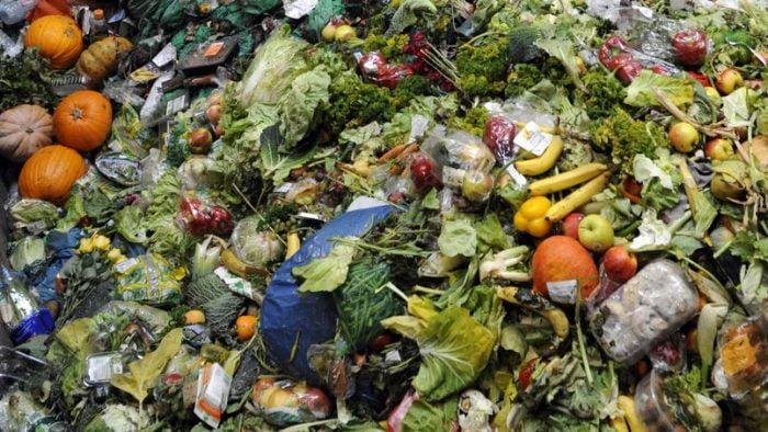 Israël : Un tiers de la nourriture est jetée à la poubelle