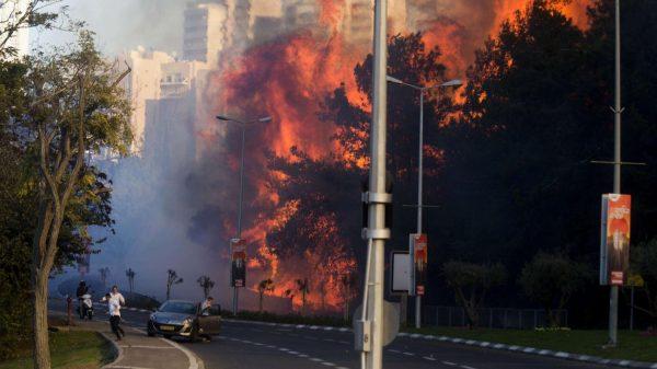 Les terribles incendies du mois de Novembre ont détruit des centaines de maisons