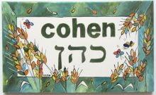 Israël: et le grand gagnant 2016 est... Mr Cohen