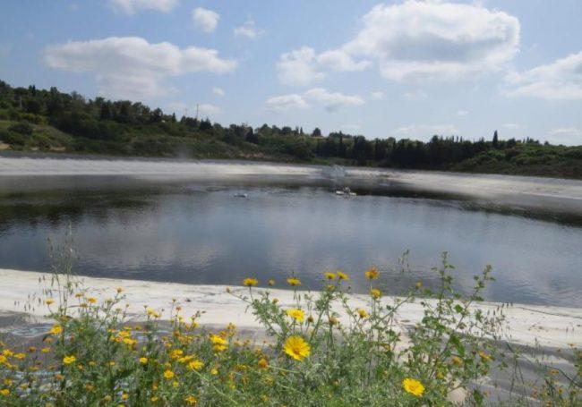 Israël: recycler jusqu'à 95% des eaux usées du pays