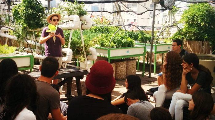 Israël: un potager urbain sur le toit d'un centre commercial de Tel Aviv