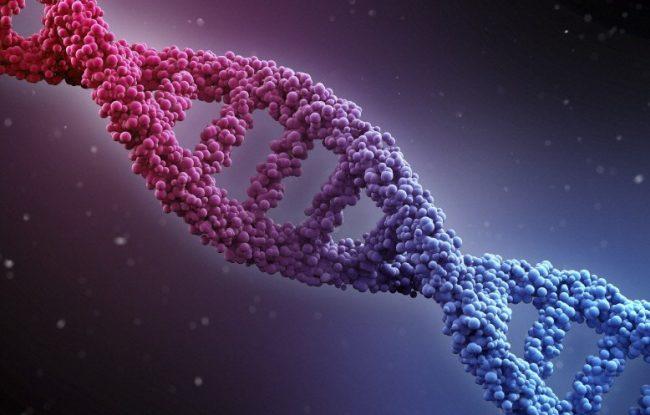Les scientifiques israéliens identifient une maladie infantile rare