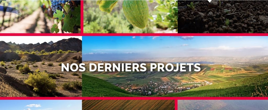 israland projets terrains agricoles