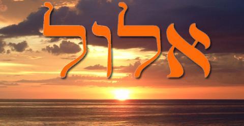 Le Rabbi de Nemirov