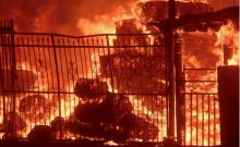 Californie: un havre de paix pour 23 rouleaux de Torah sauvés des incendies