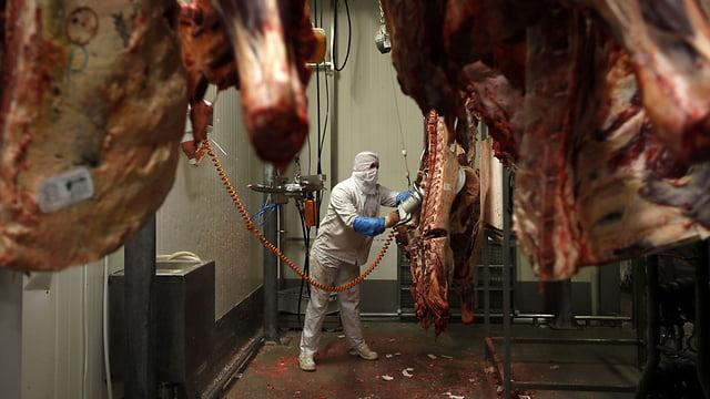 Plus de viande kasher de Pologne