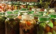 Pour la première fois, Israël accueille le festival des cornichons