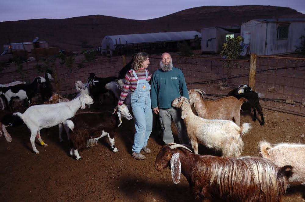 La ferme de Naot dans le Negev