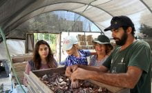 Israël: les fouilles font la lumière sur la destruction des Temples à Tisha Beav