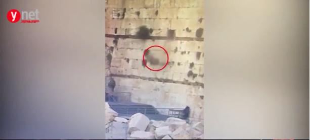 La pierre s'est écrasée à proximité d'une femme qui s'est enfuie, paniquée