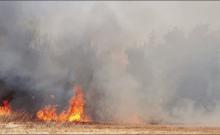 Israël : le Hamas aurait l'intention d'arrêter la guerre du feu