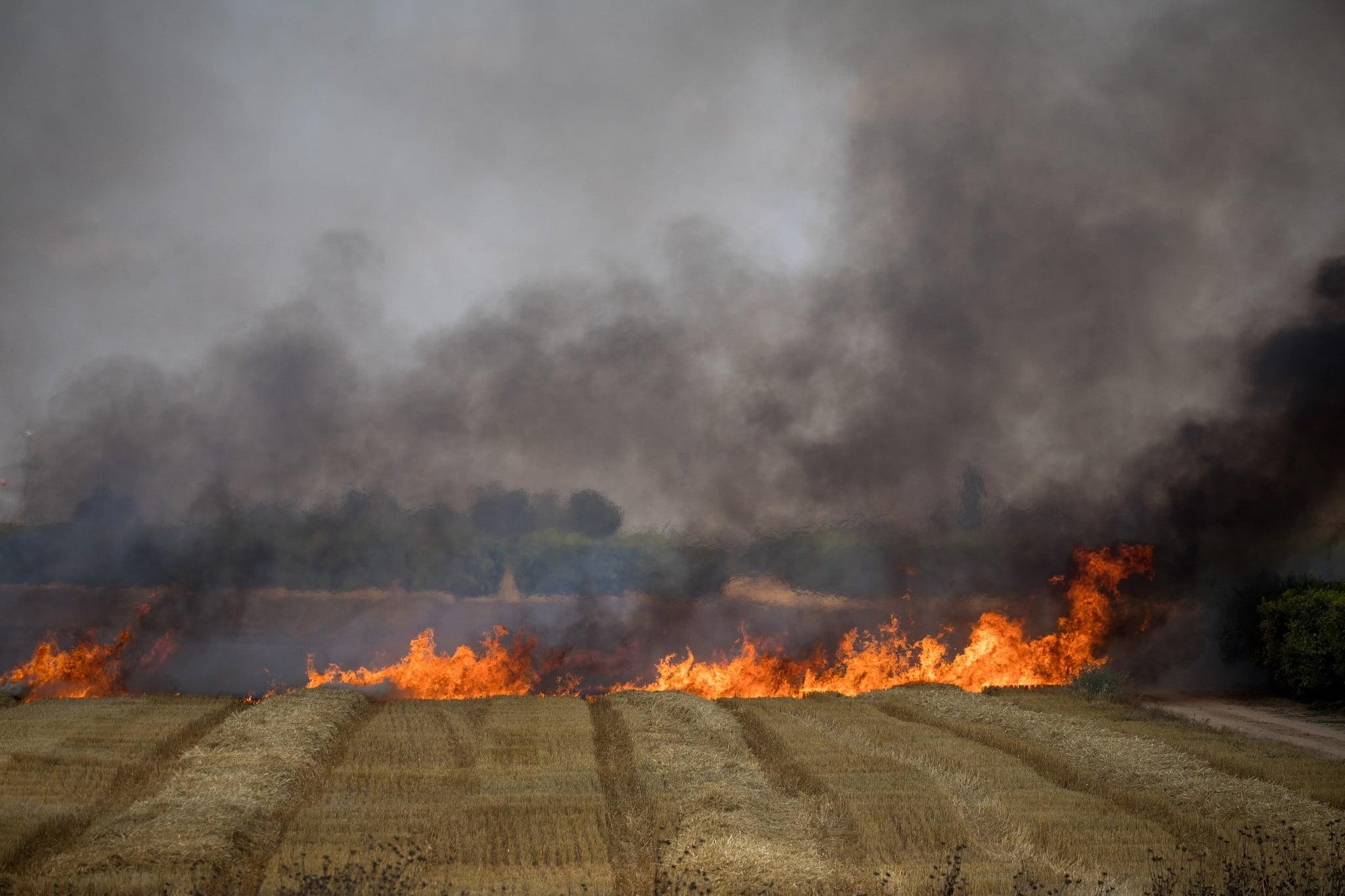 Champs brûlés