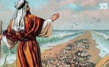 """Un film à ne pas manquer """"La véritable histoire de Moïse"""""""