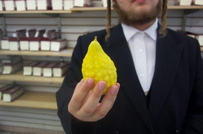 Comment un fruit chinois est-il devenu un symbole de Souccot?
