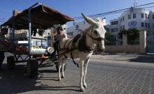 L'économie de la Bande de Gaza est au bord du gouffre