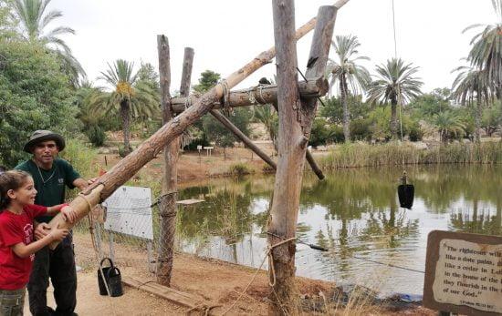 Activités aquatiques à Neot Kedumim. Photo de Reut Shai Dror