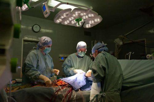 Le cœur artificiel est implanté dans la poitrine du patient sans retirer son cœur défaillant et sert de substitut à son activité