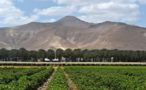 Israël: UPS a refusé d'effectuer une livraison dans la vallée du Jourdain