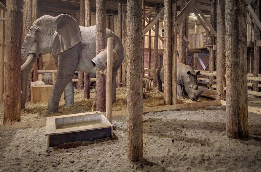 représentation d'animaux dans l'arche de Noé