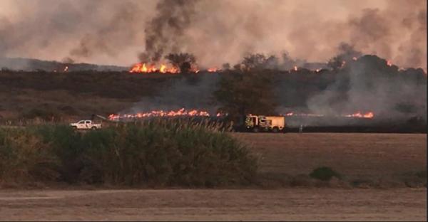 Incendie près du kibboutz Or Haner causé par un ballon incendiaire de Gaza (Photo: Assaf Gvaram)