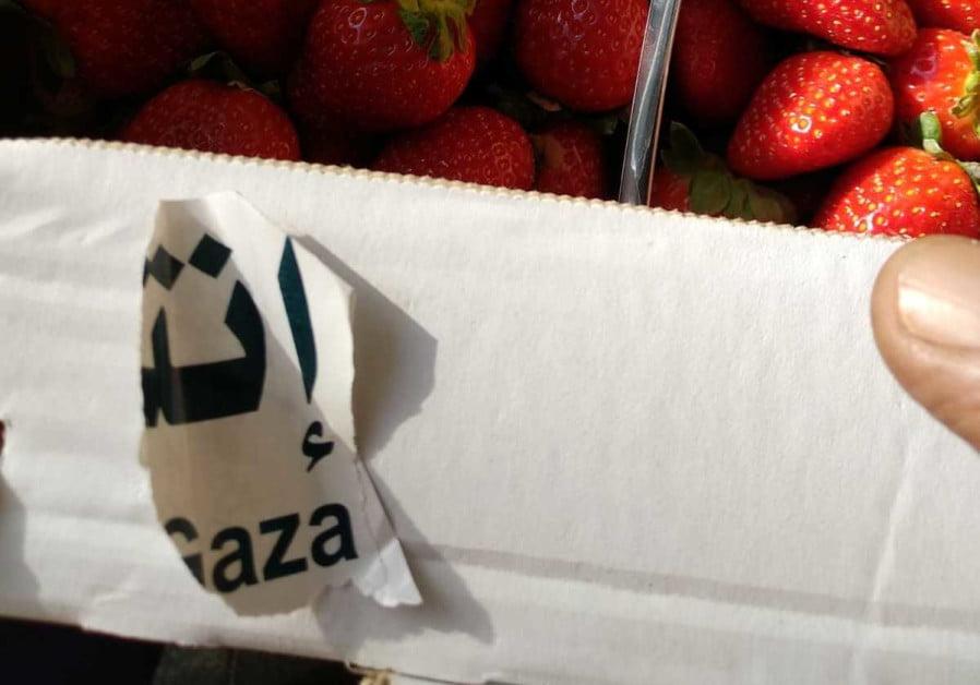 les fraises de Gaza sur le marché de Jérusalem