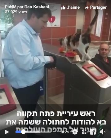 Le maire de Petah Tikva, Rami Greenberg a rendu visite au célèbre félin