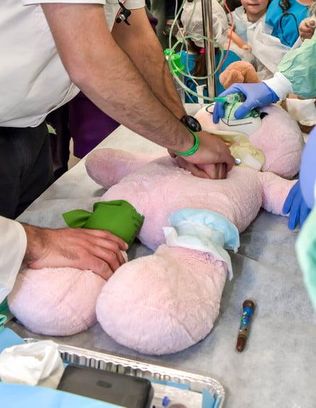 L'hôpital des peluches et des poupées 2019