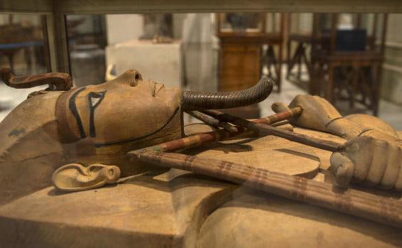 Israël: briser le mythe et repenser la mort des premiers-nés en Egypte