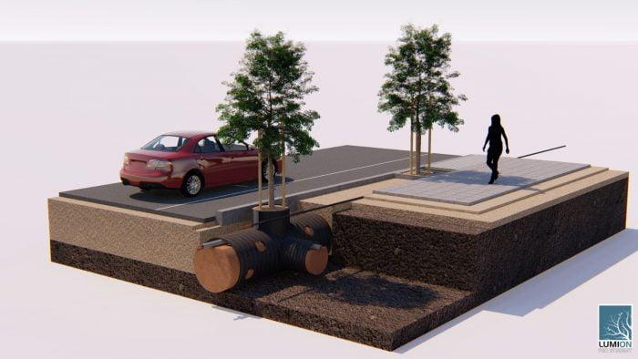 Israël: TreeTube permet aux racines des arbres de pousser sans endommager les trottoirs