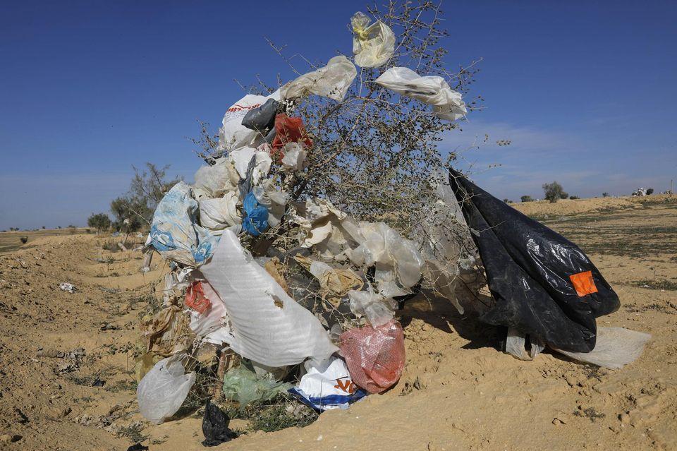 Aux abords des plages comme dans le désert de Negev (ici en photo), la pollution des sacs plastiques est un fléau pour Israël. Photo Menahem Kahana. AFP
