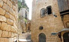 Israël : il s'infiltre dans un musée pour voler du sang de chauve-souris