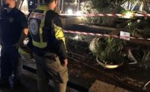 Électrocution de 4 personnes dans un bassin d'ornement à Tel-Aviv