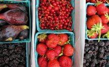 Gazoz fait maison aux fruits