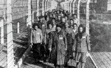 nier l'Holocauste n'est pas protégé par la liberté d'expression