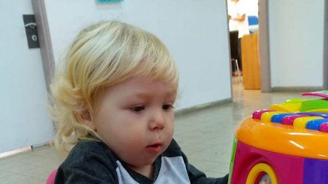 Aryé Bogrov étranglé dans son jardin d'enfant