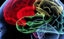 Technion, Bar-Ilan U. crée une puce d'administration de protéines pour le traitement de la maladie d'Alzheimer