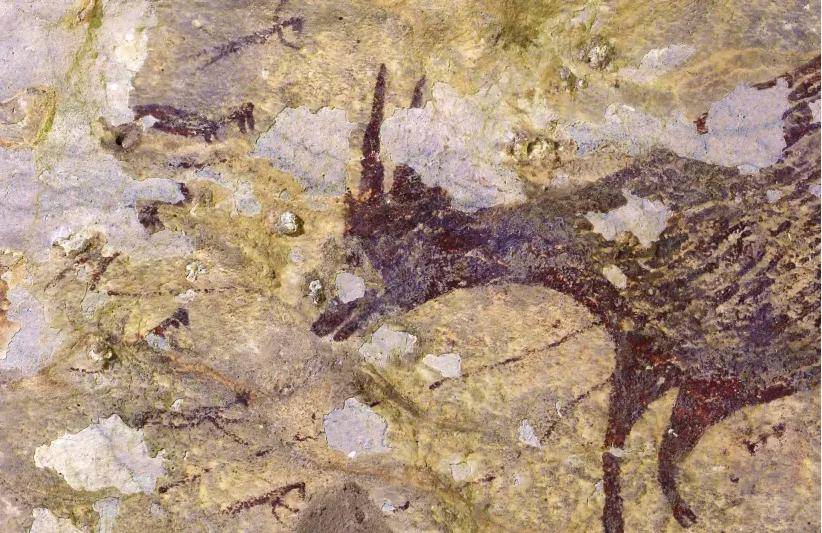 La Plus Ancienne Peinture Rupestre Au Monde Découverte En