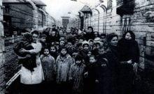 Du peuple déicide au juif accapareur