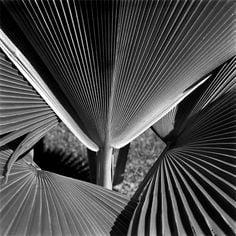 Le futurisme particulier de Hans Gunter Flieg